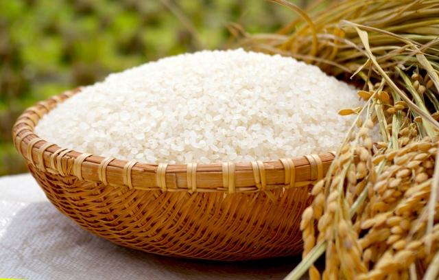 オーストラリア 米 持ち込み