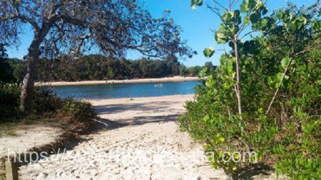 palm beach gold coast パームビーチ ゴールドコースト