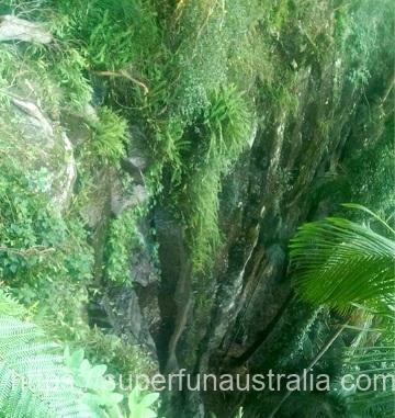 タンボリンマウンテン 滝 Witches Falls