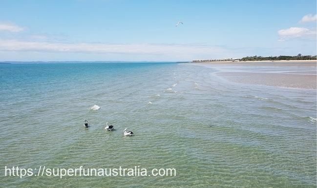 ハービーベイ オーストラリア